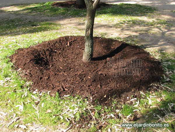 Amigos para siempre jardines jardiner a - Materiales de jardineria ...