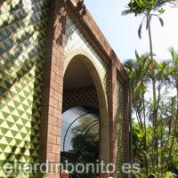 Tenerife plantas parque y jardines - El botanico puerto de la cruz ...