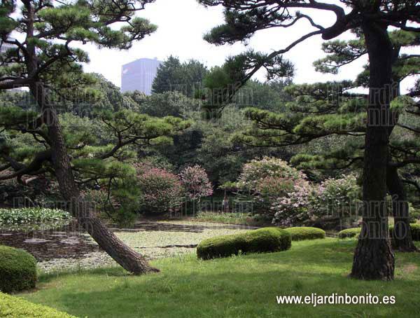 Jardines del palacio imperial tokio jap n - Jardines de japon ...