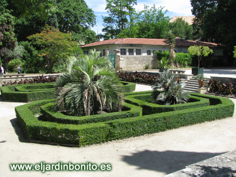 Jard n bot nico de montpellier 01 - Jardin botanico las palmas ...